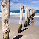 Old Jetty, St Clair Beach, Dunedin by Elana Bailey