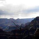 Grand Canyon - Raining by sunnykcdb