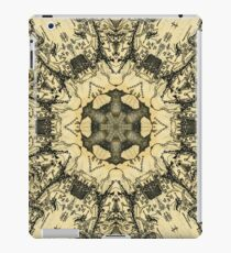 Rohan Map iPad Case/Skin