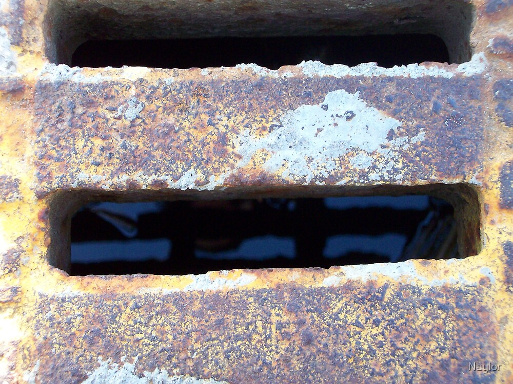 Down the drain by Naylor