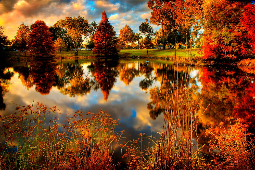 Autumn Tones II by Damiend