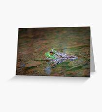 Frog Pond Greeting Card