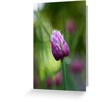 Chive Greeting Card