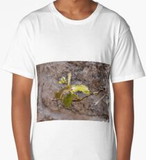 Young tender green leaves of the vine Long T-Shirt
