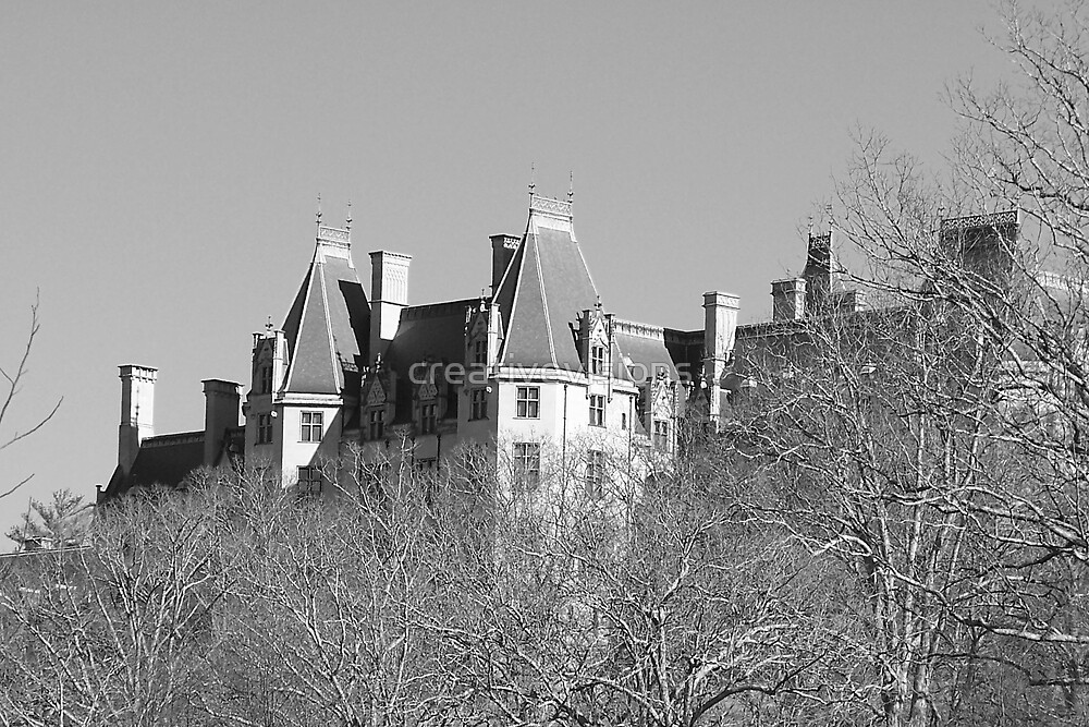 Biltmore Estate by creativevisions