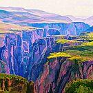 Black Canyon Gunnison National Park Art by Walter Colvin