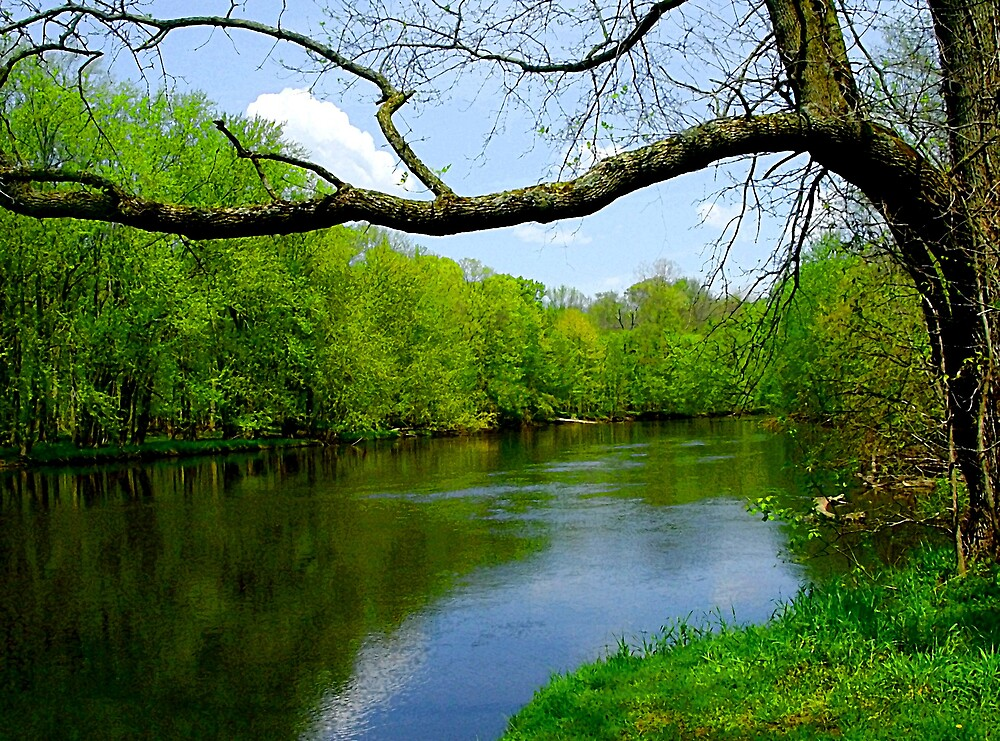 Grand River by Laura S