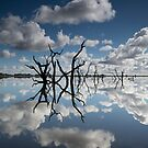 Reflection on Taylors Lake by Joshua Westendorf