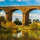 Malmsbury Viaduct by Peter Rattigan