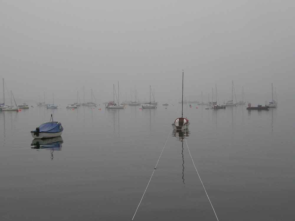 Harbour mist, Tobermory, Isle of Mull, Scotland by jay12