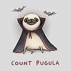 Count Pugula by Sophie Corrigan