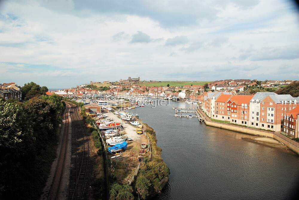 whitby, from new bridge by dougie1