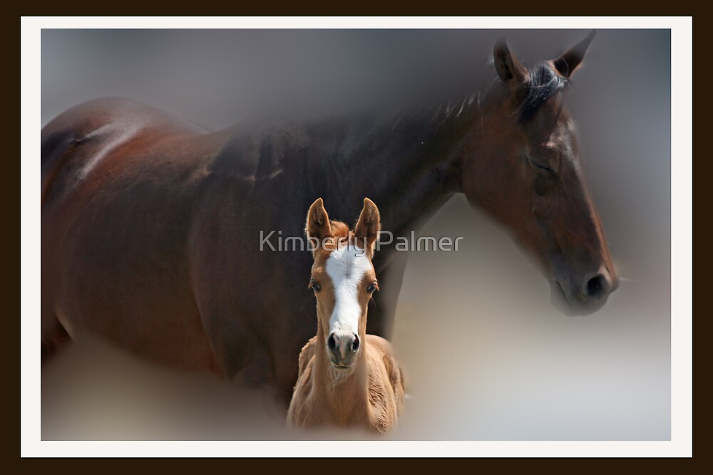 Mama and Colt by Kimberly Palmer