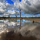 1678 Winton Wetlands by Hans Kawitzki