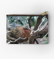 ROOSTING Studio Pouch