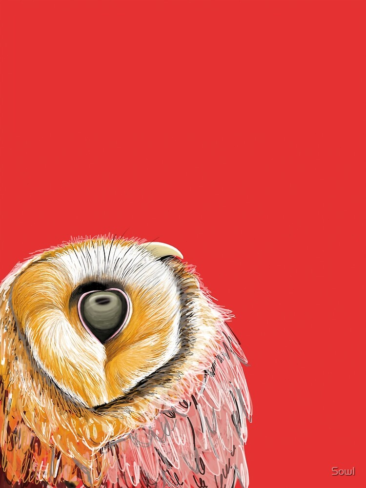 Red owl by Sowl