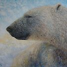 Polar Bear by elinjohnsen