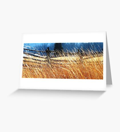 Windswept Gettysburg Battlefield Greeting Card