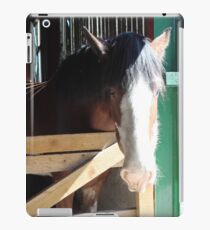 Shire Horse iPad Case/Skin
