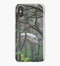 Diplodocus iPhone Case/Skin