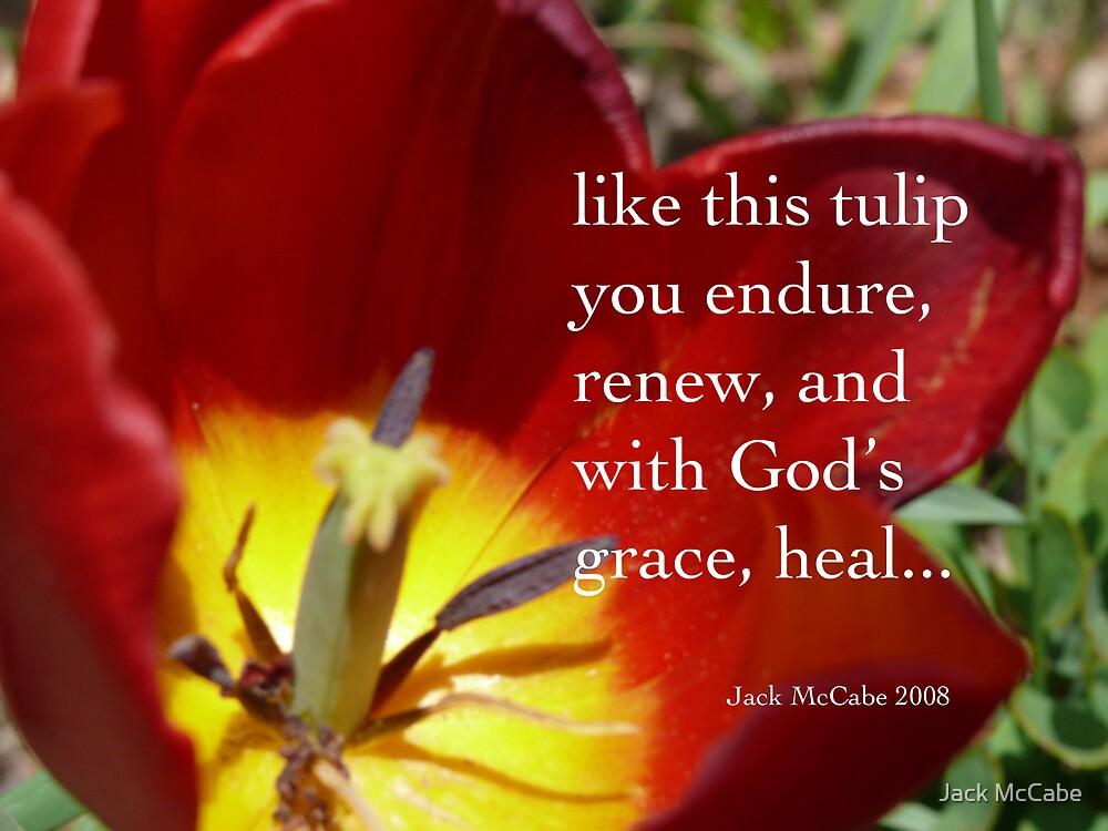 Tulip Prayer  by Jack McCabe