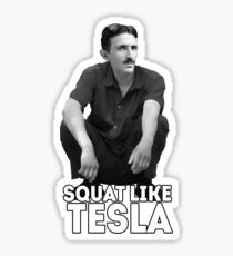 Tesla Squatting Sticker