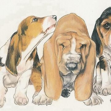 Basset Hound Puppies by BarbBarcikKeith