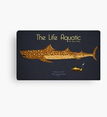 The Life Aquatic - Jaguar Shark Canvas Print