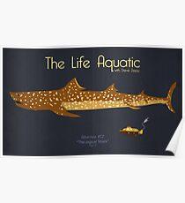 The Life Aquatic - Jaguar Shark Poster