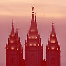 Salt Lake Temple Spires by Ryan Houston