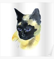 Watercolor Siamese Cat Hand Drawn Pet Portrait Illustration isolated on white Poster
