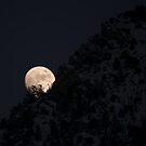Moonrise - American Fork Canyon by Ryan Houston