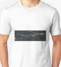 The Evolution of Toothed Whales (Skeletal Study) T-Shirt