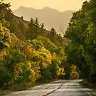 Driving in Ogden Canyon by Ryan Houston