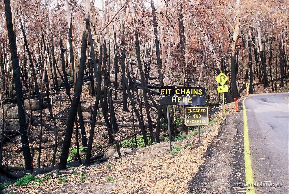 Fit chains? by mcnamaraimages