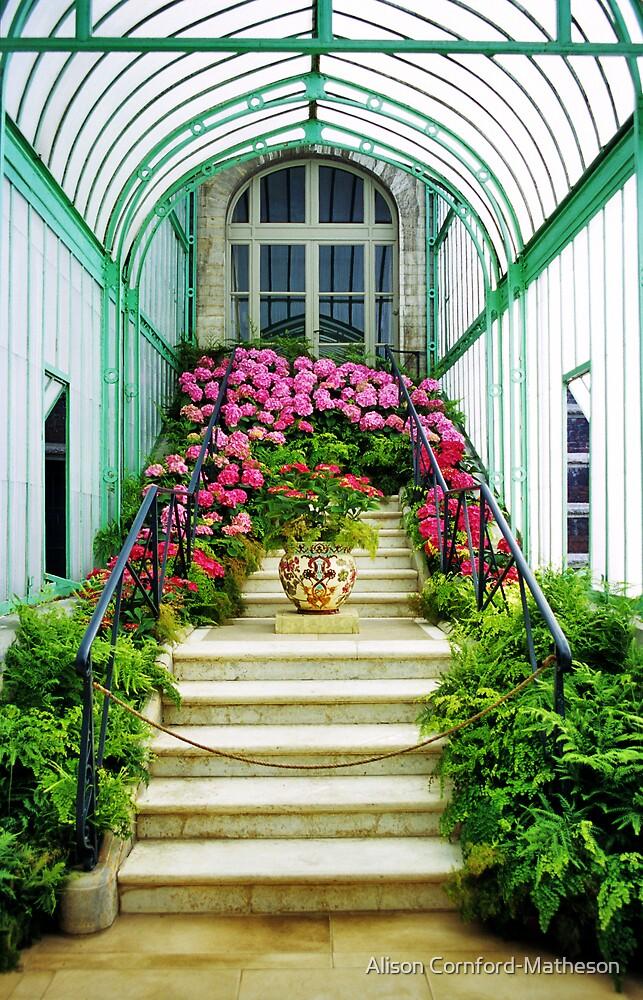 Belgian Royal Gardens by Alison Cornford-Matheson