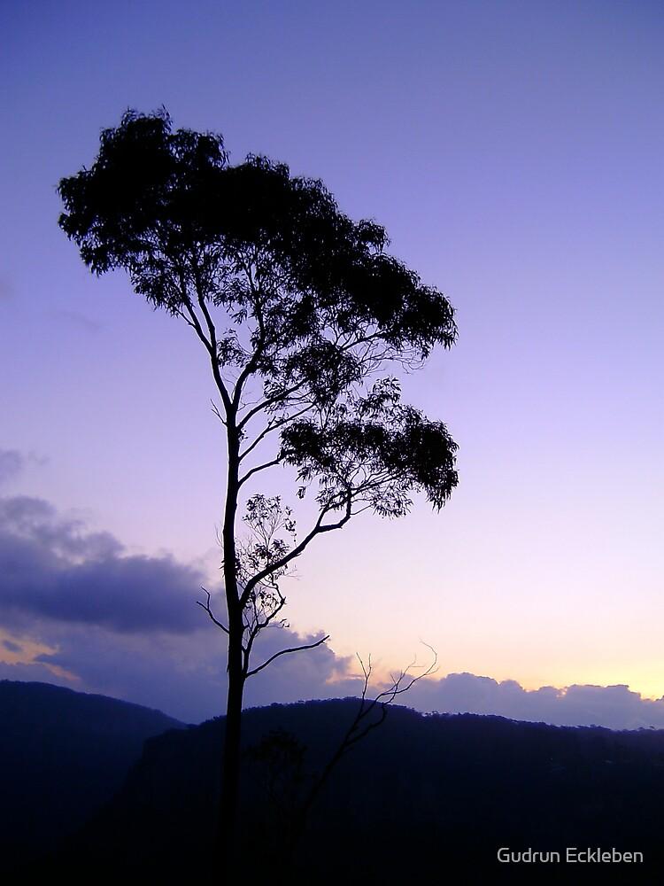 Purple tree silhouette by Gudrun Eckleben