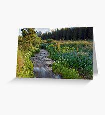 Selkirk Creek 2 Greeting Card