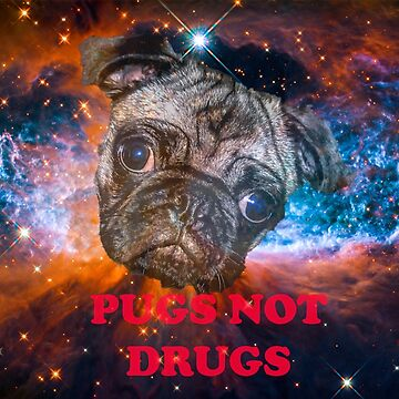 Pugs Not Drugs by MrHandsome