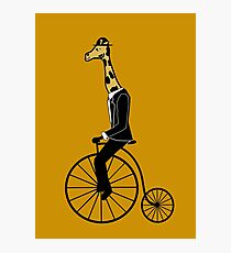 Penny-farthing Giraffe Photographic Print