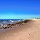 Greenwich Beach, PEI, Canada by Shulie1