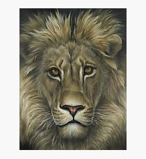 Lion African Wildlife Painting Photographic Print