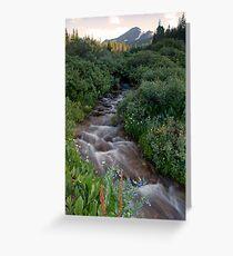 Selkirk Creek Greeting Card