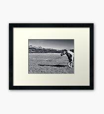 Me And My Shadow In Black And White Framed Print