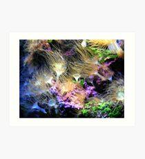 Undersea shot  Art Print