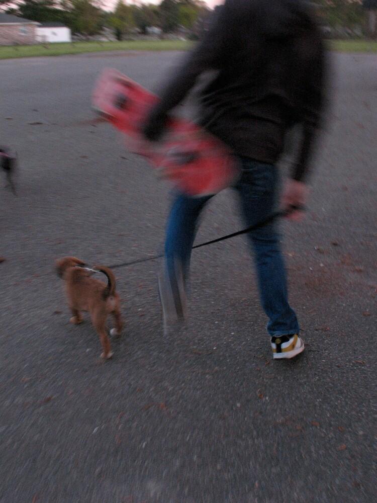 walking dog by KIMkent