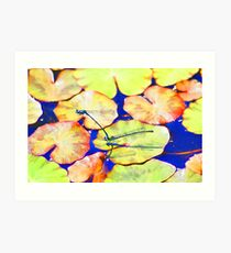 Mating Damselflies Art Print