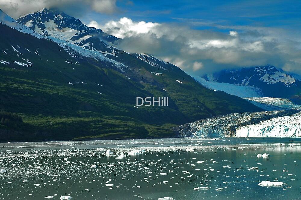 Beautiful Alaska by DSHill