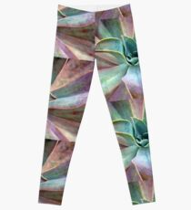 Organic Beauty Leggings
