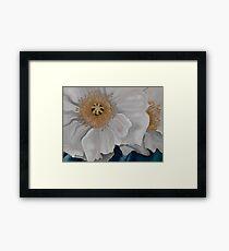 White Poppies Framed Print